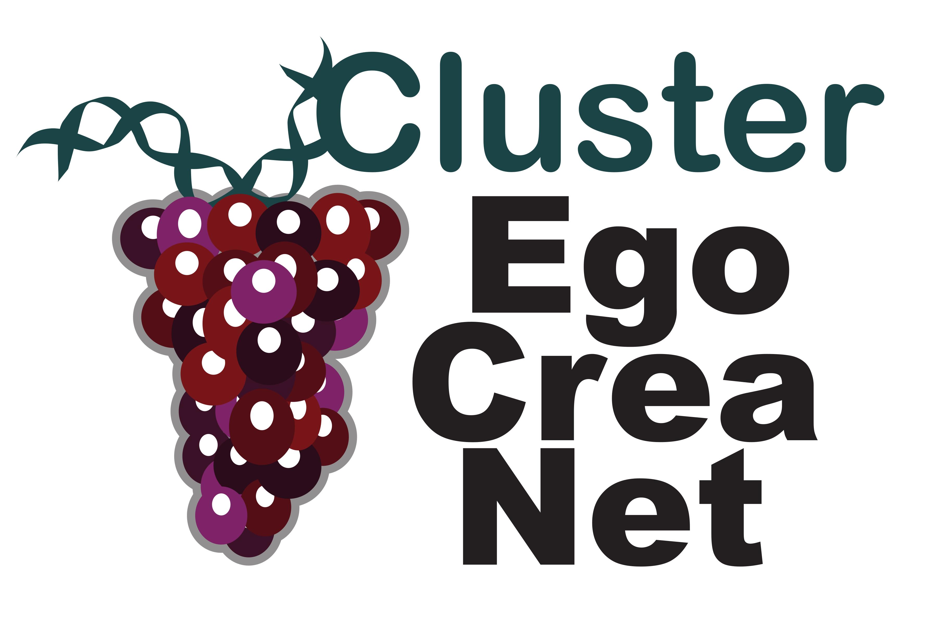 logo_cluster_ECN
